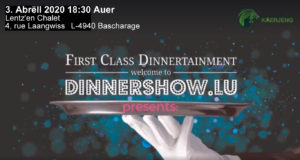 ABBA Dinnerschow – Tribute to the music of ABBA